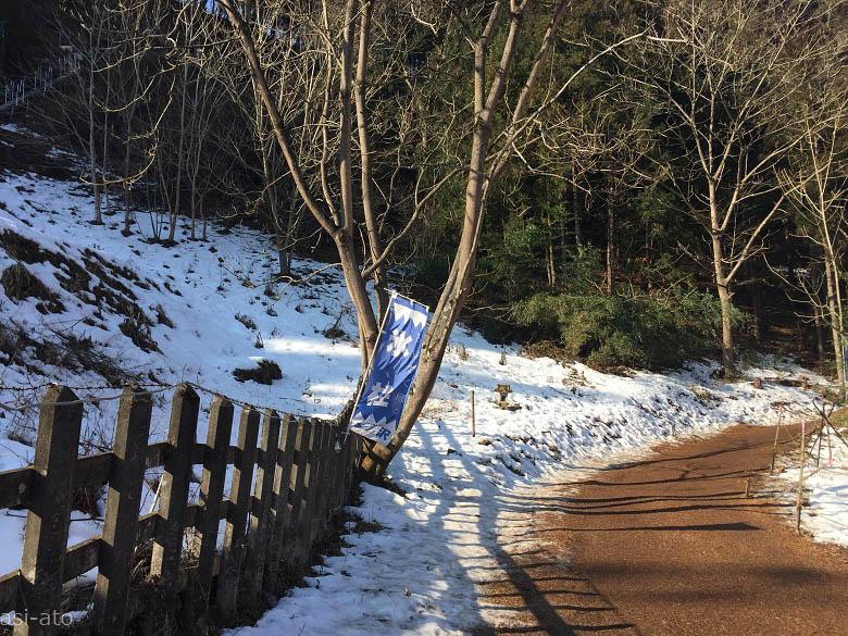 氷柱会場への道