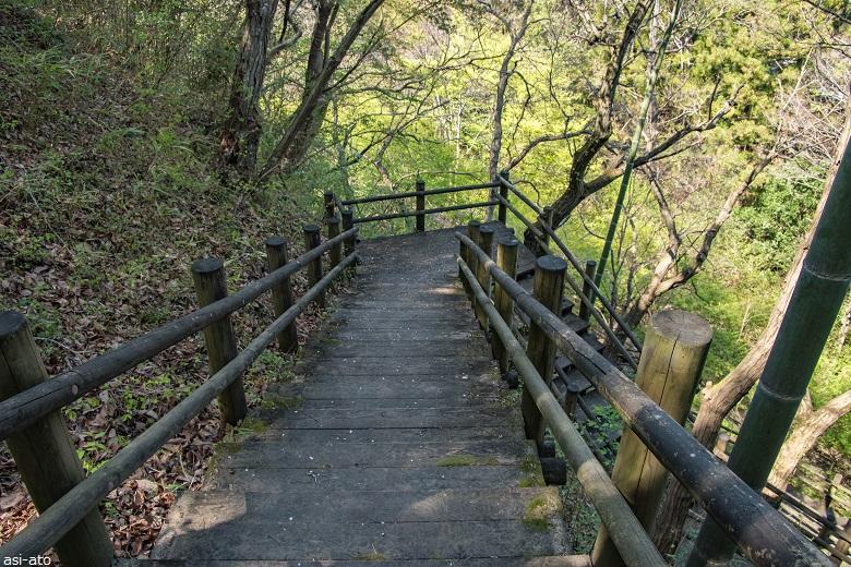 カタクリ群生地への木の階段