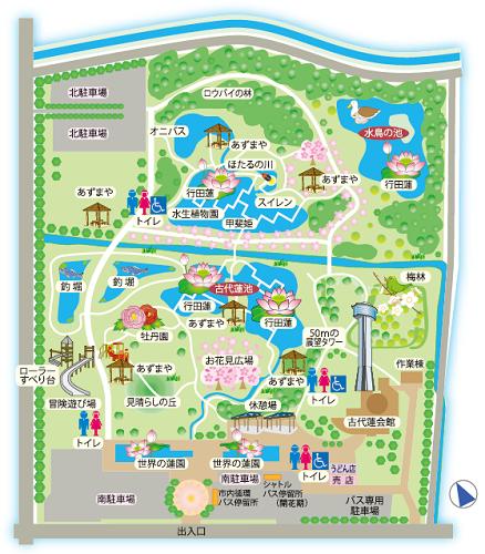 古代蓮の里 園内マップ
